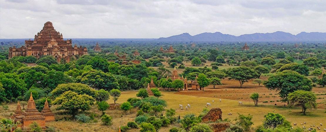 Klima Indiens